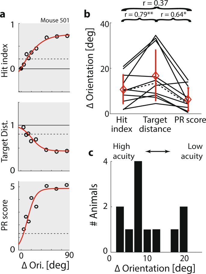 The Virtual-Environment-Foraging Task enables rapid training and