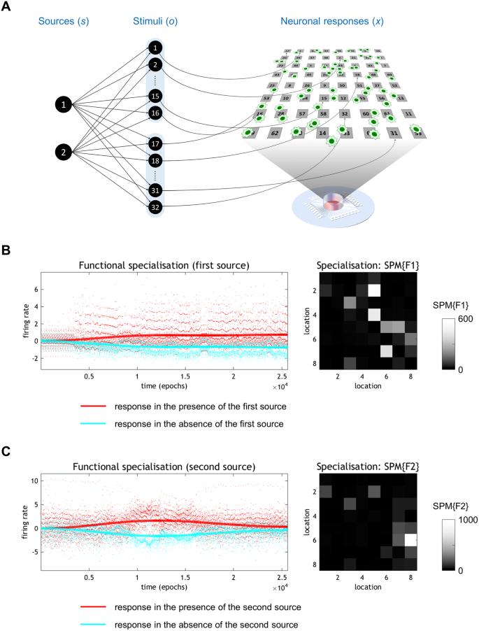 In vitro neural networks minimise variational free energy