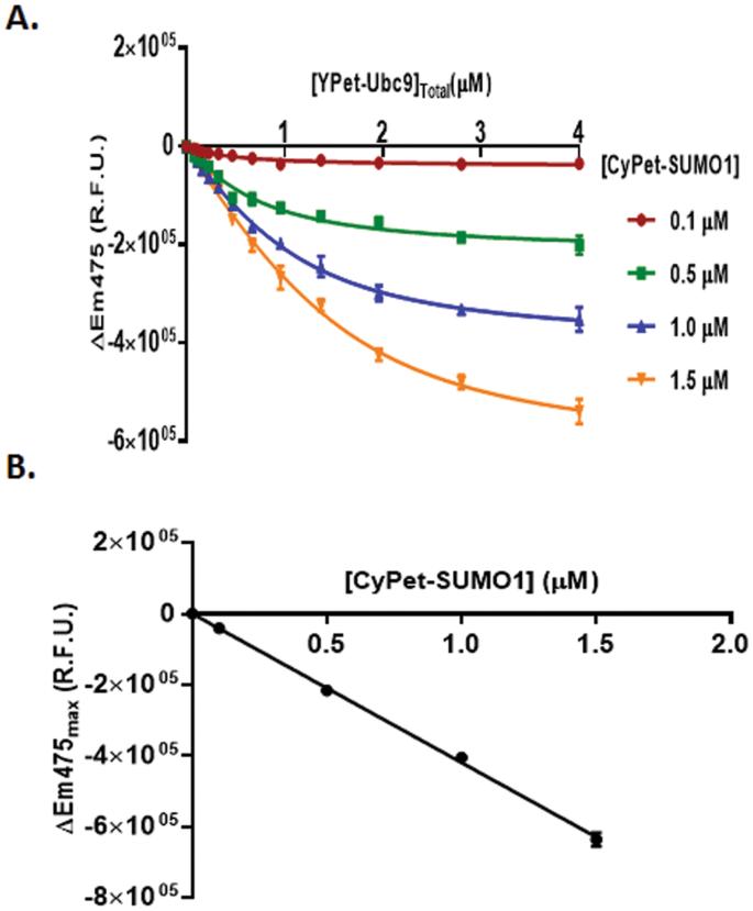 Protein–Protein Affinity Determination by Quantitative FRET