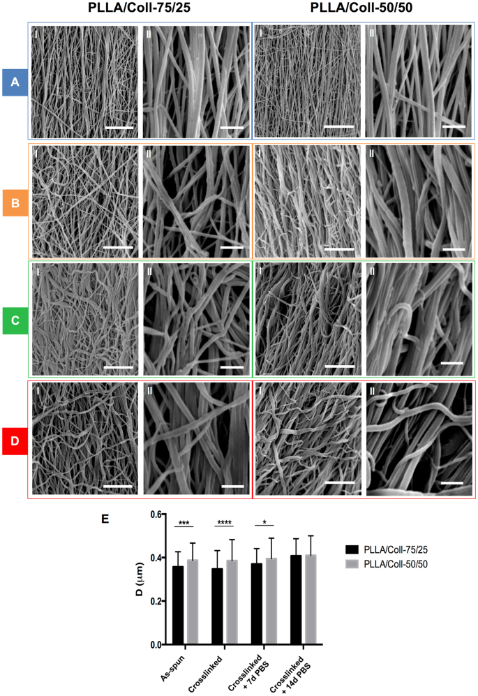 Tendon Fascicle-Inspired Nanofibrous Scaffold of Polylactic acid