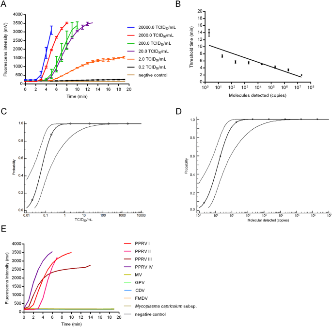 Development of real-time reverse transcription recombinase