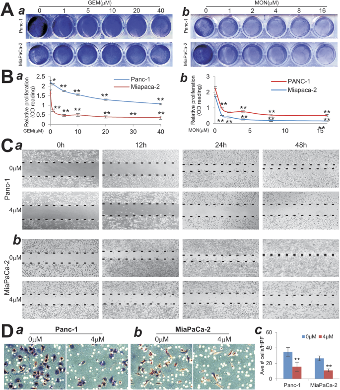 Monensin inhibits cell proliferation and tumor growth of