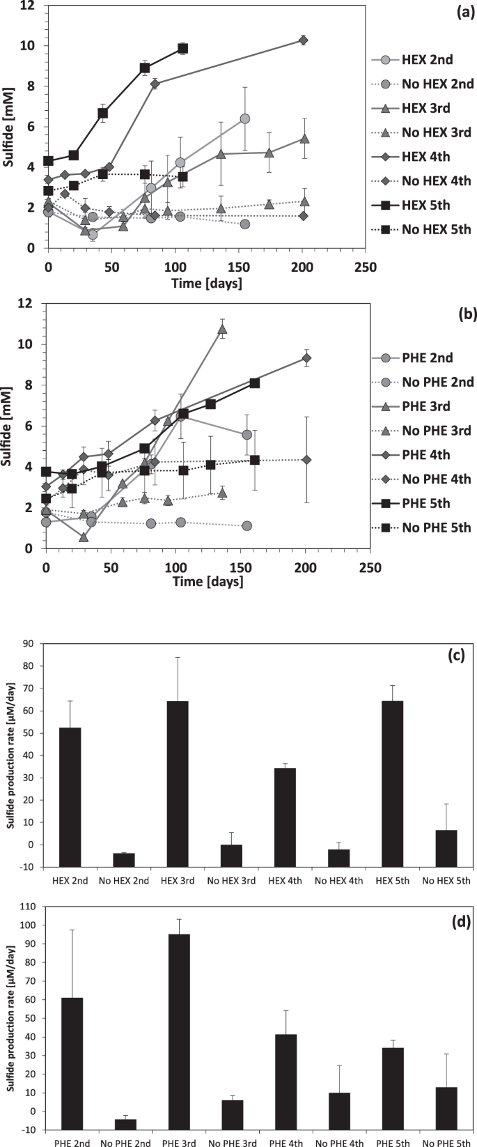 Anaerobic degradation of hexadecane and phenanthrene coupled