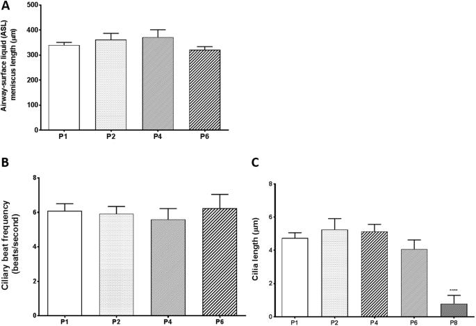 Optimization of Normal Human Bronchial Epithelial (NHBE