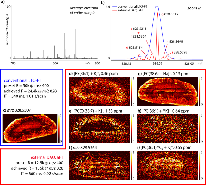 Increased throughput and ultra-high mass resolution in DESI FT-ICR