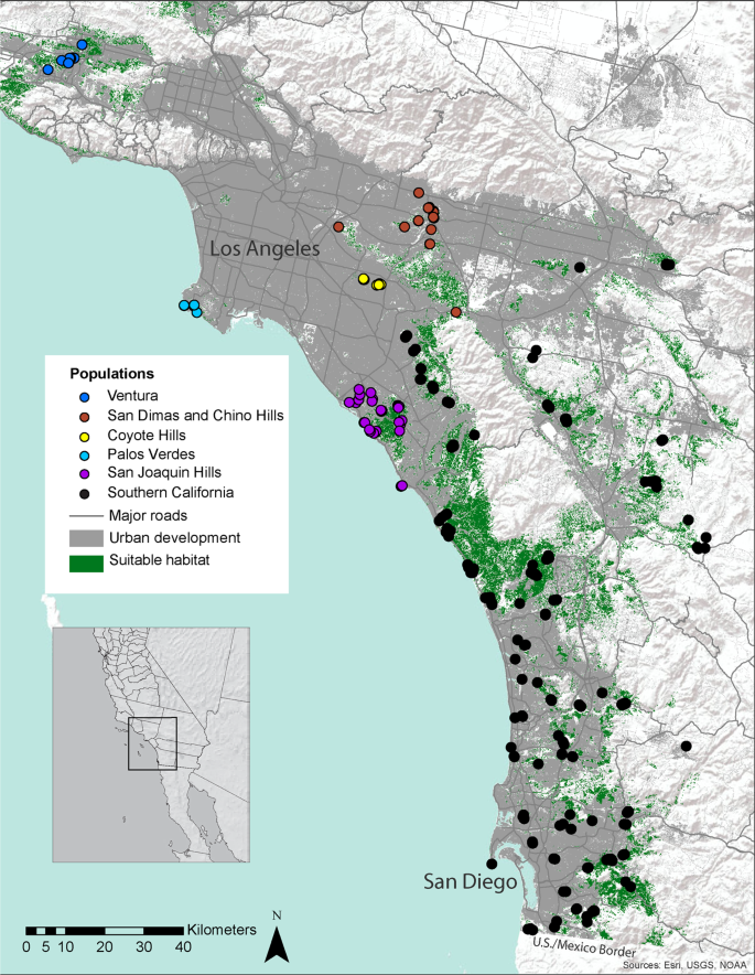 Distinguishing recent dispersal from historical genetic