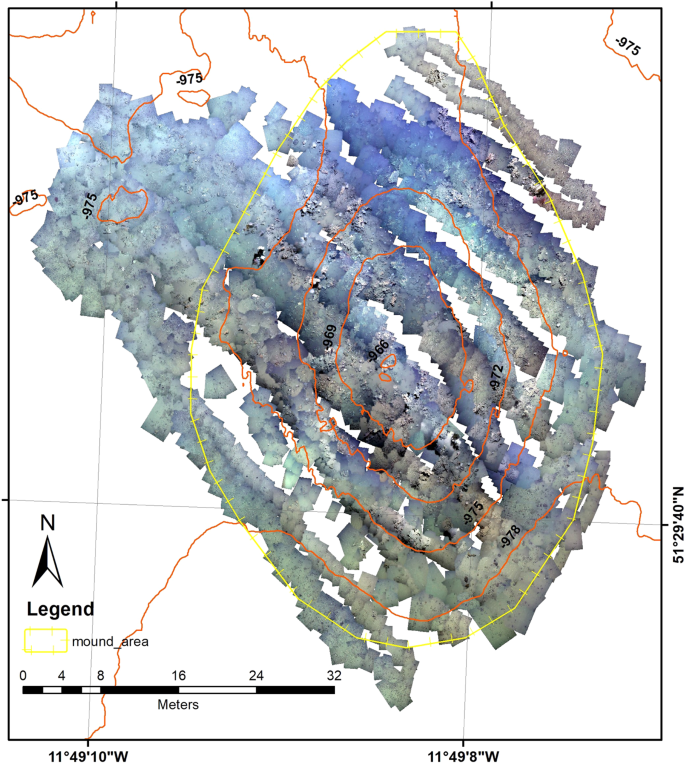 High resolution mapping of a cold water coral mound