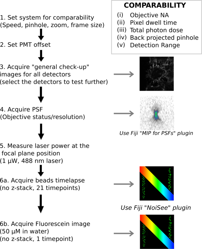 Using the NoiSee workflow to measure signal-to-noise ratios of