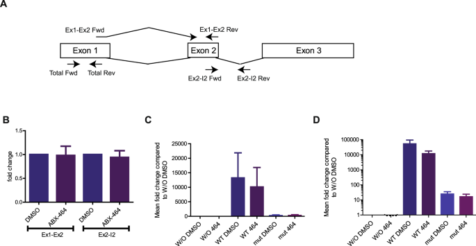 Both anti-inflammatory and antiviral properties of novel