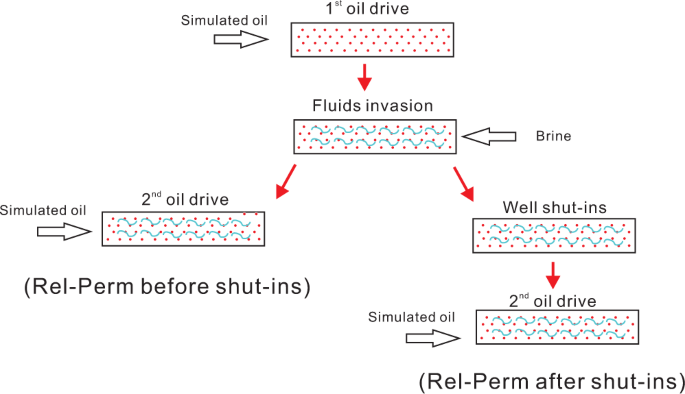 Permeability regain and aqueous phase migration during