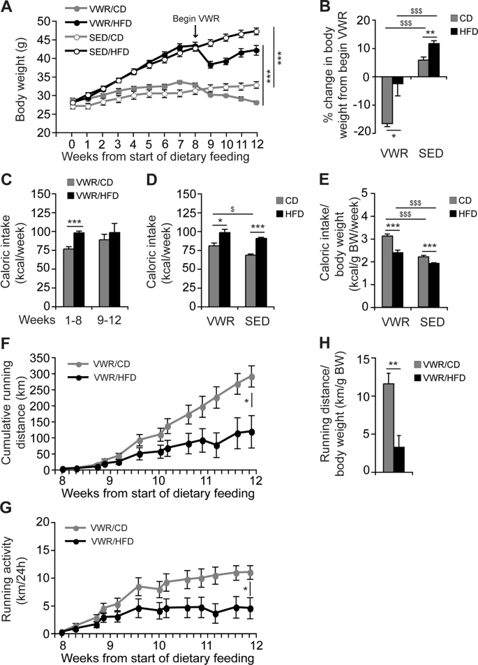 Voluntary Exercise In Mice Fed An Obesogenic Diet Alters The Hepatic