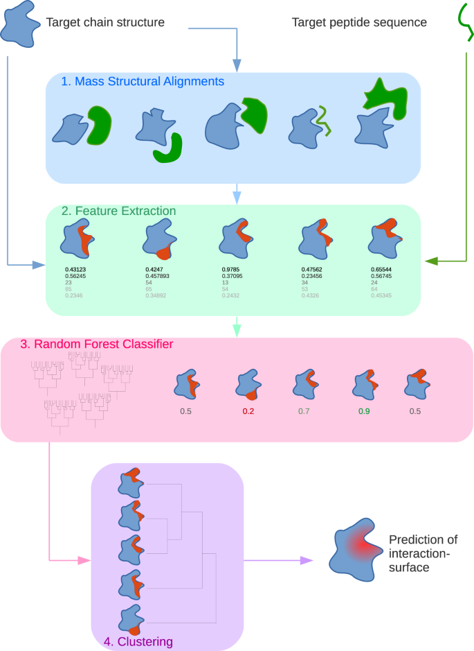Predicting protein-peptide interaction sites using distant