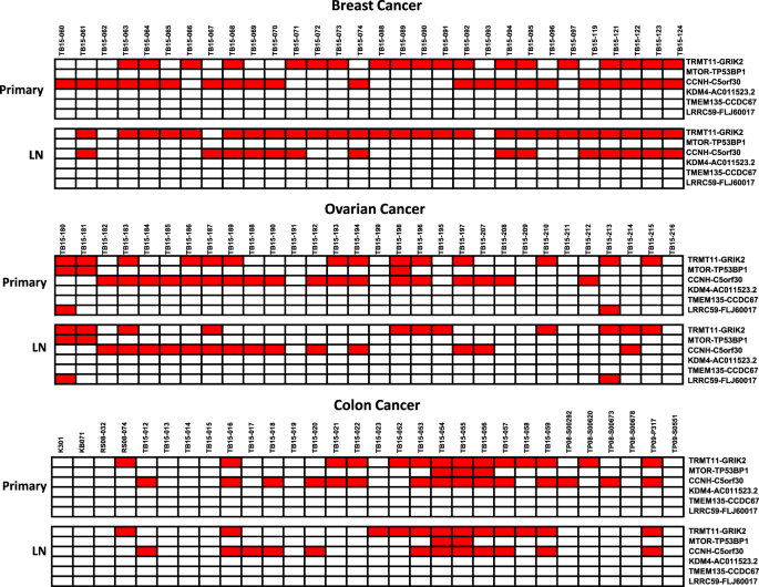 Identification Of Recurrent Fusion Genes Across Multiple Cancer Types Scientific Reports