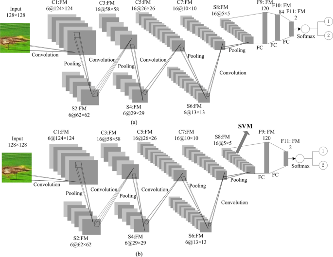 Rice Blast Disease Recognition Using a Deep Convolutional