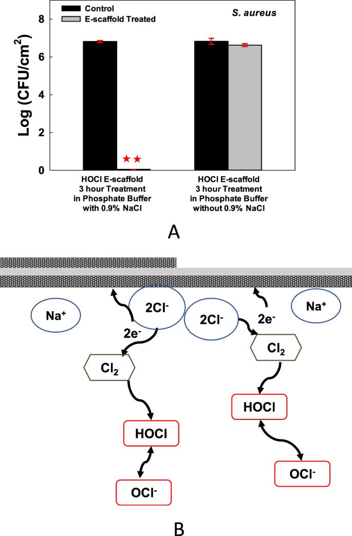 Hypochlorous-Acid-Generating Electrochemical Scaffold for