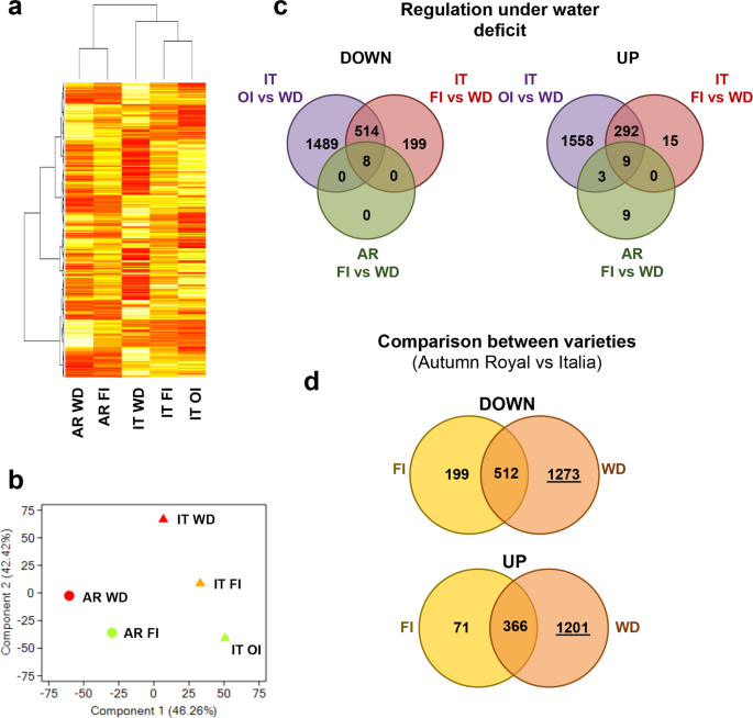 Transcriptomic and genomic structural variation analyses on