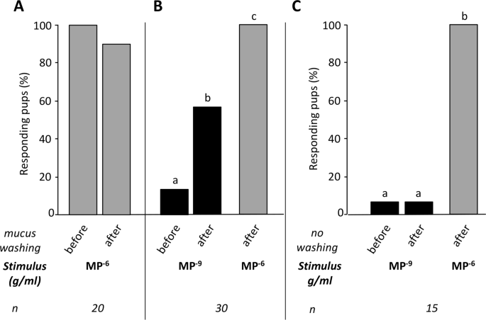 Nasal mucus glutathione transferase activity and impact on olfactory