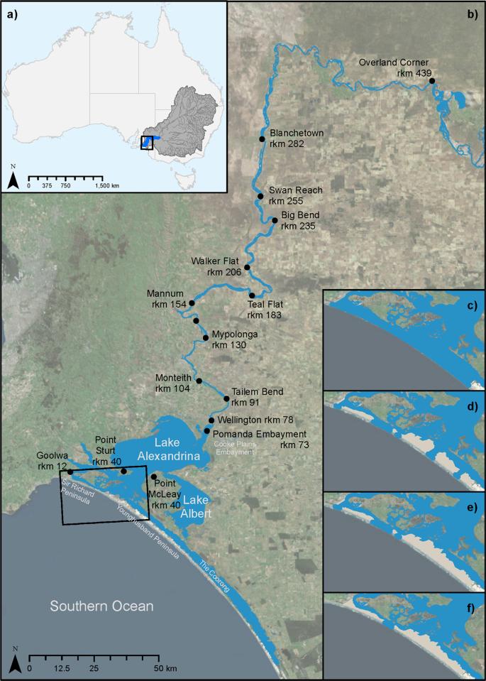 Modelling Holocene analogues of coastal plain estuaries