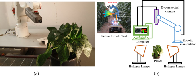 Early Detection of Tomato Spotted Wilt Virus by Hyperspectral