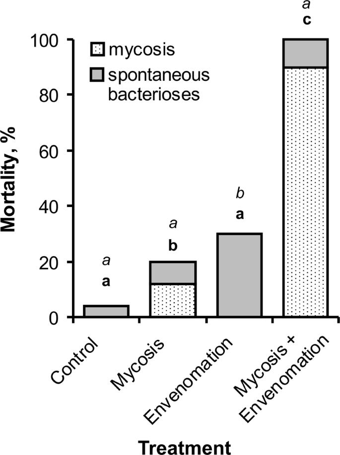 Parasitoid envenomation alters the Galleria mellonella midgut