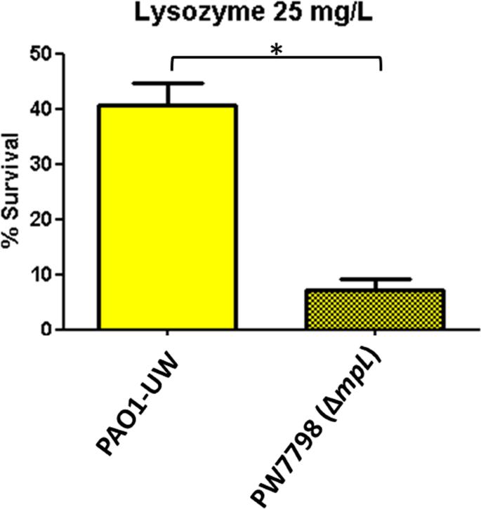 Profiling the susceptibility of Pseudomonas aeruginosa strains from