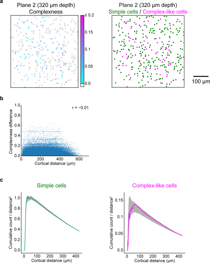 Characterisation of nonlinear receptive fields of visual