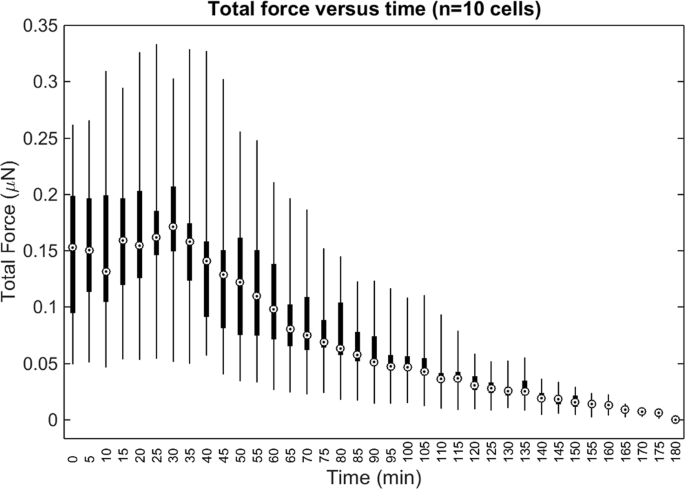 Quantitative reconstruction of time-varying 3D cell forces