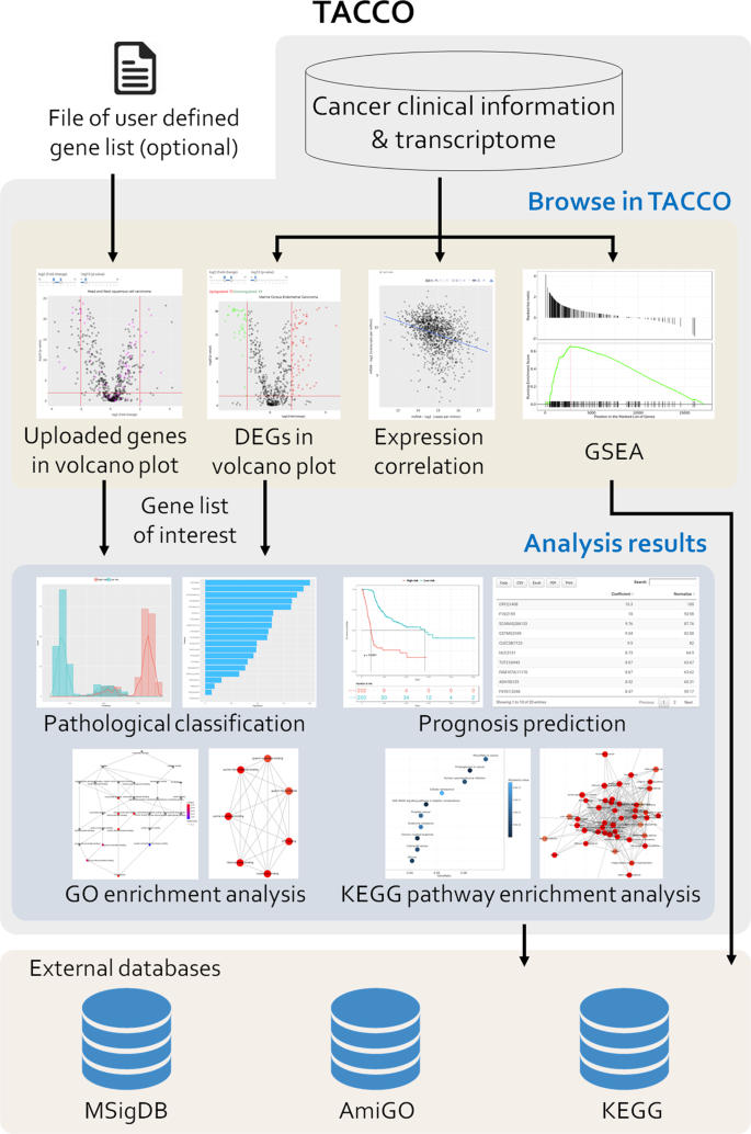 TACCO, a Database Connecting Transcriptome Alterations