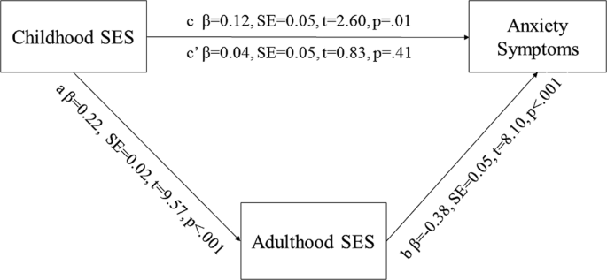 The Impact of Early Life Stress on Anxiety Symptoms in Late