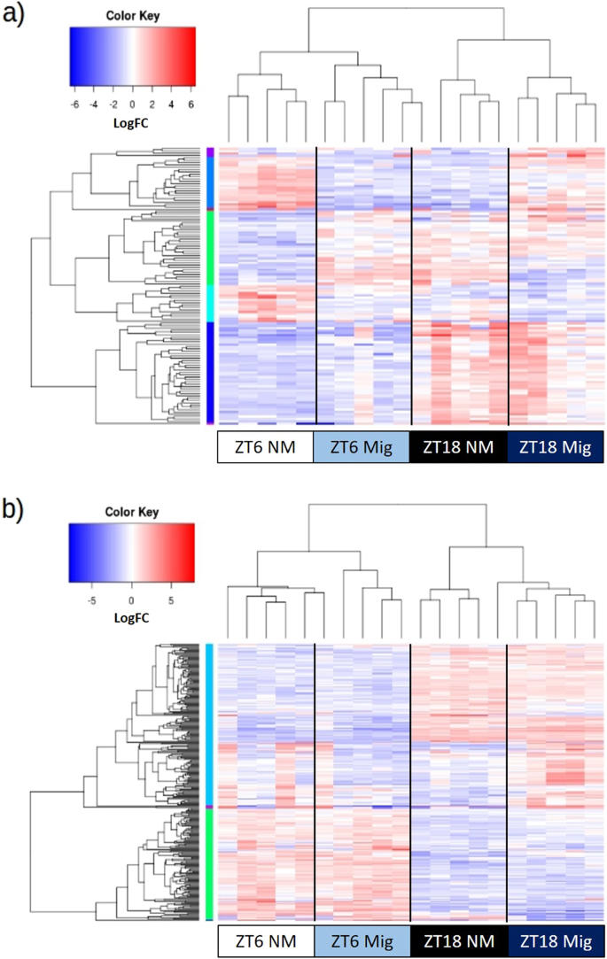 Transcriptome Analyses of Heart and Liver Reveal Novel