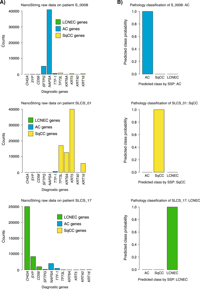 A combined gene expression tool for parallel histological prediction