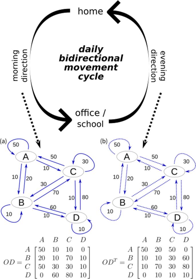 EpiRank: Modeling Bidirectional Disease Spread In Asymmetric Commuting  Networks   Scientific Reports