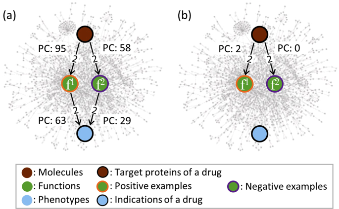 Meta-path Based Prioritization of Functional Drug Actions