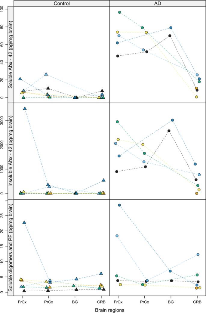 heterogeneous drug tissue binding in brain regions of rats Rat Brain Diagram
