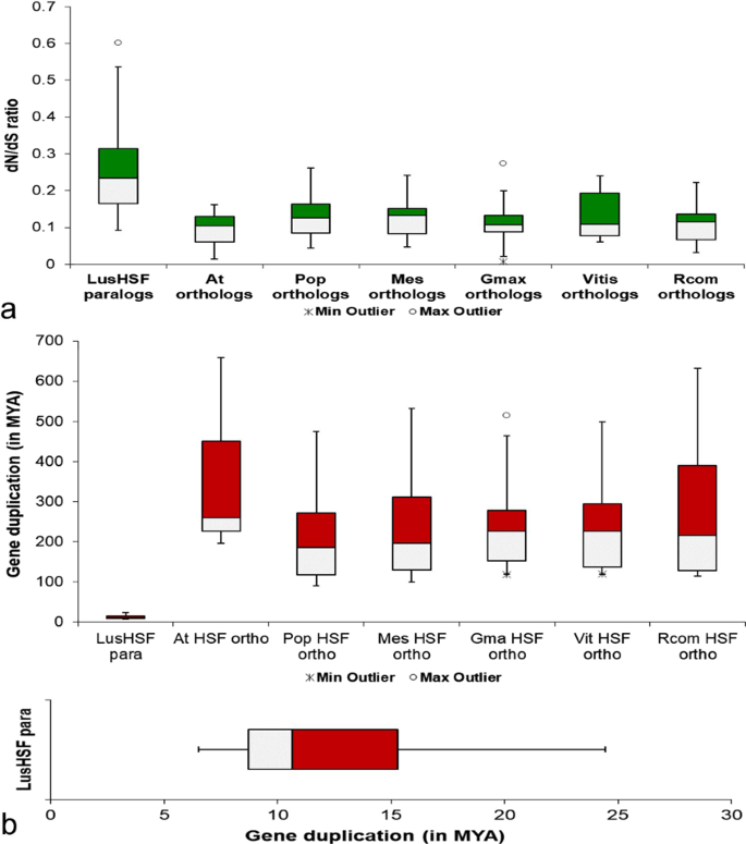 Genomic insights into HSFs as candidate genes for high-temperature