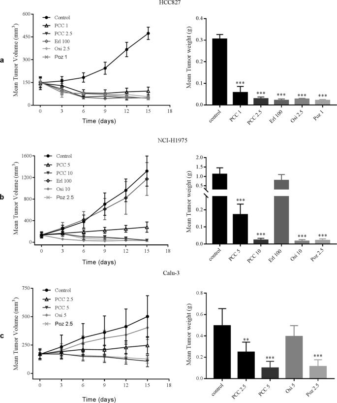 PCC0208027, a novel tyrosine kinase inhibitor, inhibits tumor growth