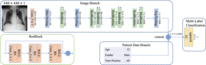 Comparison of Deep Learning Approaches for Multi-Label Chest