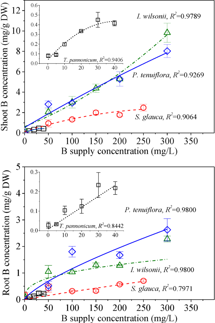 Boron tolerance and accumulation potential of four salt-tolerant