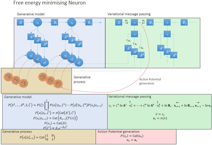 The emergence of synchrony in networks of mutually inferring neurons
