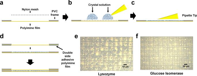 Nylon mesh-based sample holder for fixed-target serial