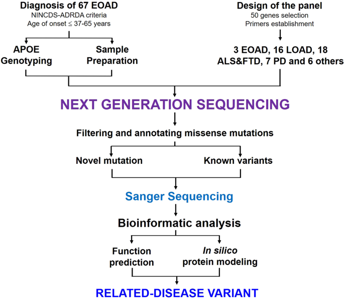 Genetic Mutation May Cause Early Onset >> Genetic Analyses Of Early Onset Alzheimer S Disease Using