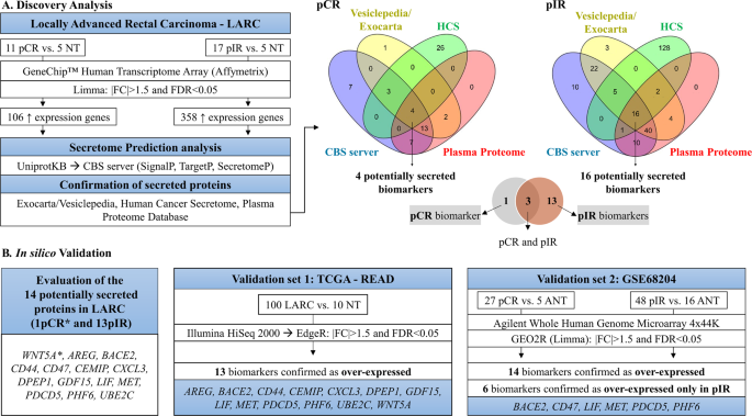 Locally advanced rectal cancer transcriptomic-based secretome