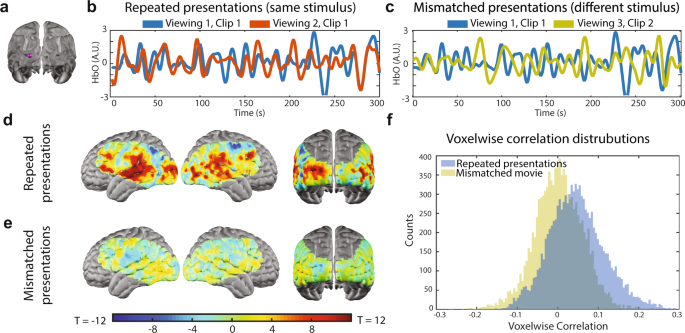 Mapping brain function during naturalistic viewing using