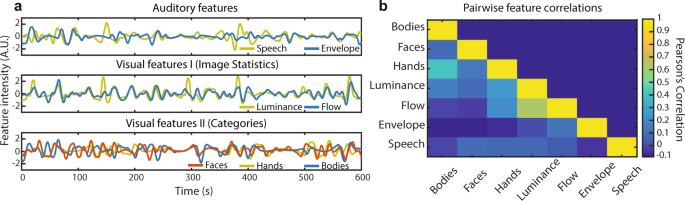 Mapping brain function during naturalistic viewing using high