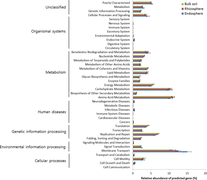 A preliminary examination of bacterial, archaeal, and fungal
