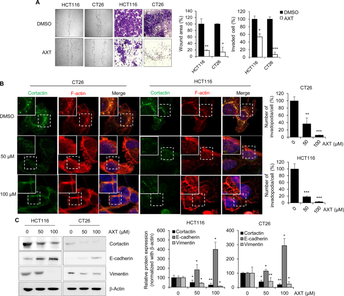 Astaxanthin Suppresses The Metastasis Of Colon Cancer By Inhibiting The Myc Mediated Downregulation Of Microrna 29a 3p And Microrna 200a Scientific Reports