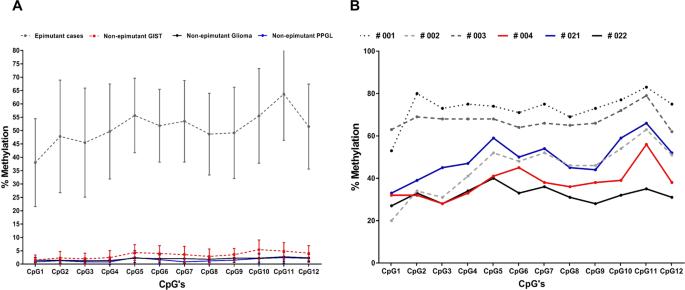 SDHC epi-mutation testing in gastrointestinal stromal tumours and rela
