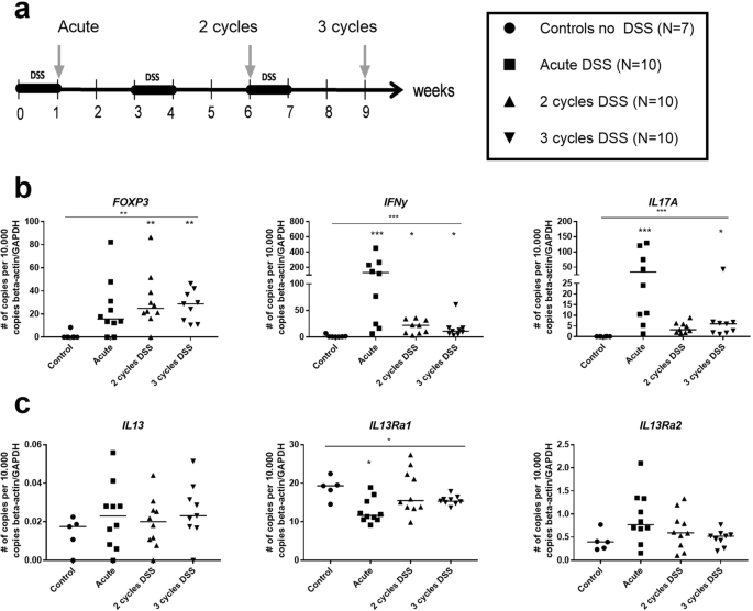 Fibrogenesis in Chronic DSS Colitis is Not Influenced by Neutralisatio