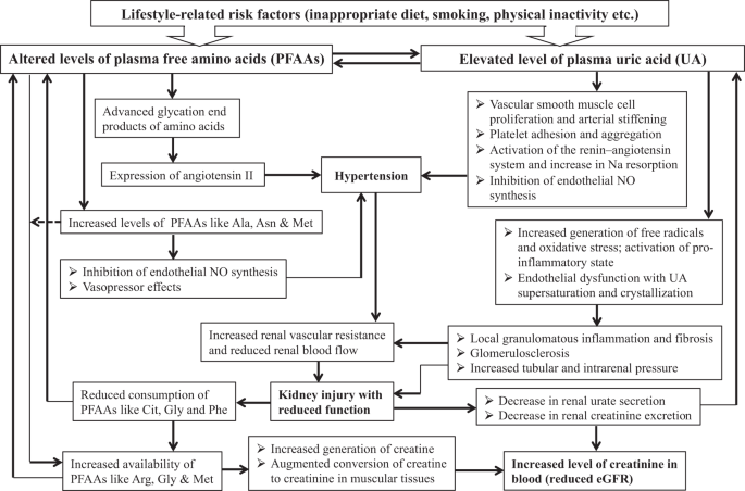Relationship of reduced glomerular filtration rate with