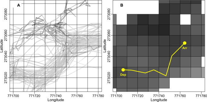Travel linearity and speed of human foragers and chimpanzees